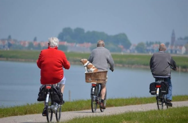 Elderly Staying Fit